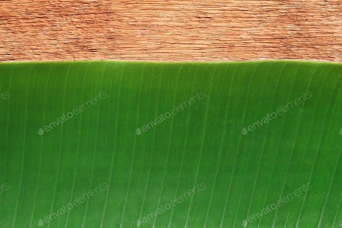 Bananenblatt auf dem Holzbrett