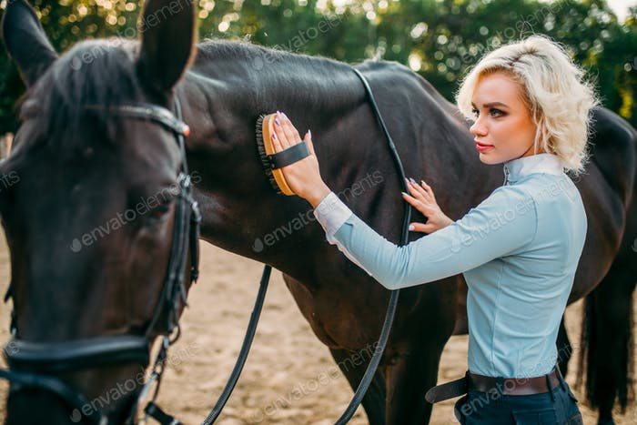 Woman take caring for the hair of brown horse