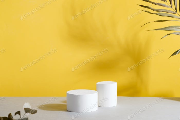 Geometric podium scene with Dry reed on duotone yellow gray background
