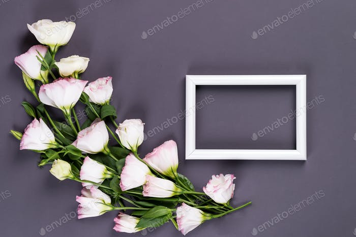 Empty gray frame and flowers eustoma on black paper background with copy space. Flat lay. Love