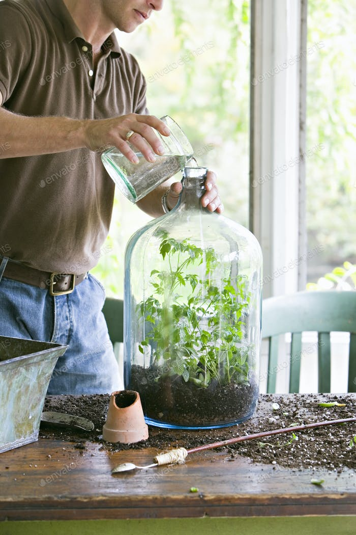 A young man repotting and creating a terrarium display within a glass jar.