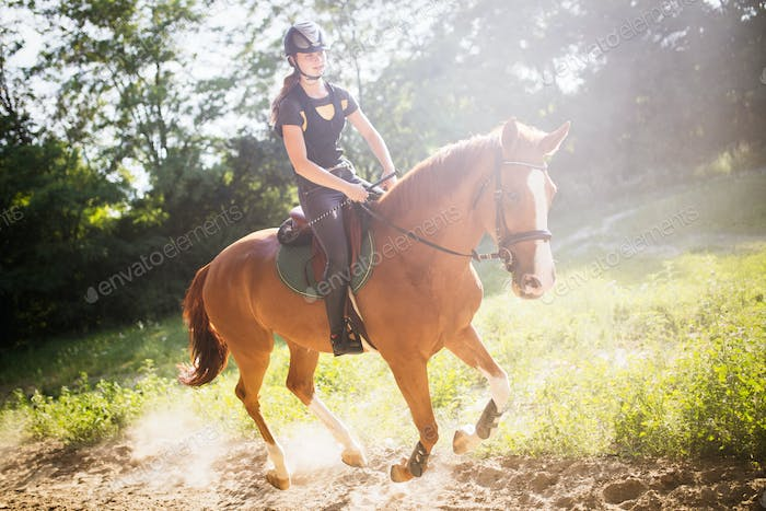 Portrait of young woman riding horse in countryside