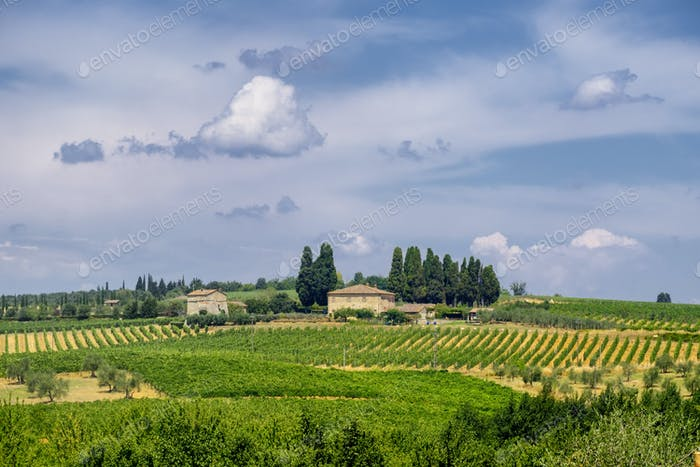 Old typical farm in the Chianti region (Tuscany)