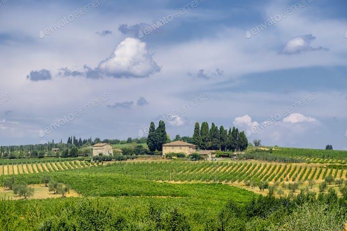 Alter typischer Bauernhof in der Region Chianti (Toskana)