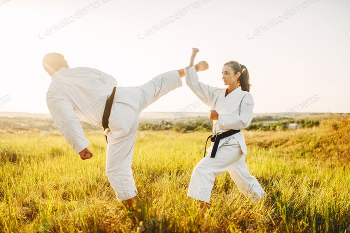 Male and female karate masters fight in field