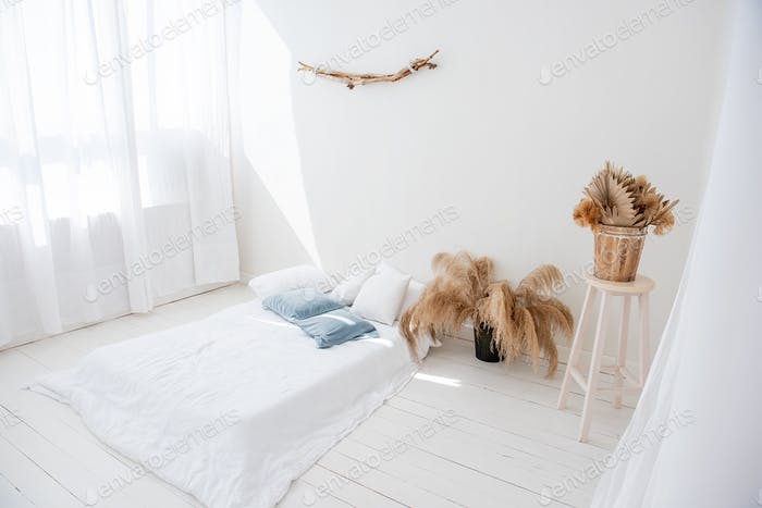 Minimalistic white loft. pampas grass in vases, driftwood hangs on the wall.