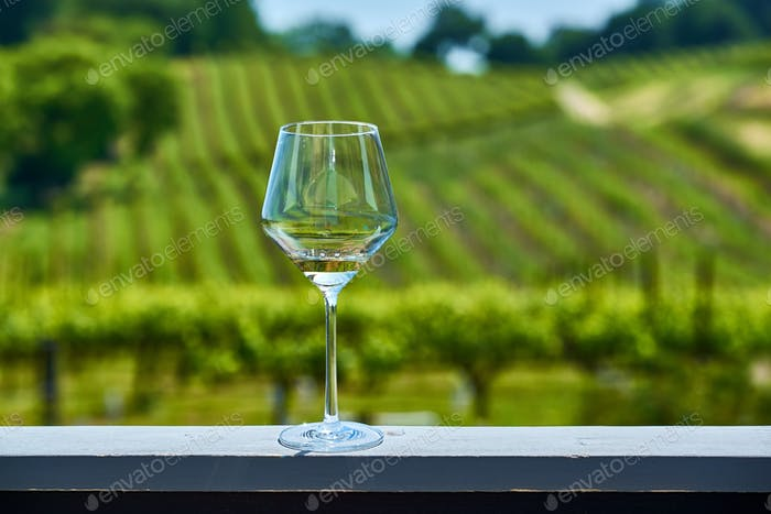 Glass of white wine and vineyards