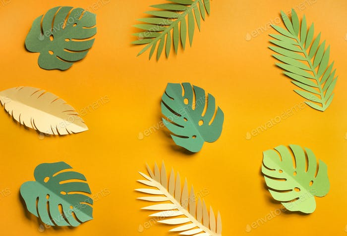 Summer yellow background with different leaves types