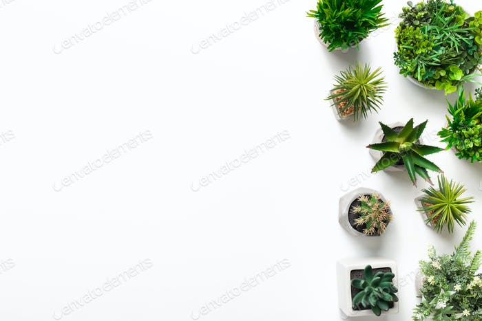 Artificial succulent and grass plants in pots on white background
