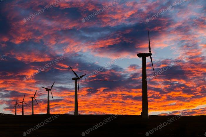 Große Windkraftanlagen in der Wüste bei Sonnenuntergang Hintergrund