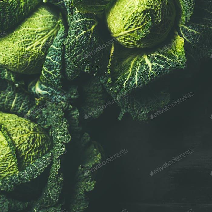 Raw fresh uncooked green cabbage, dark background, square crop