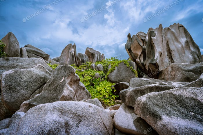 Bizarrely shaped granite boulders neat the beach, La Digue island, Seychelles