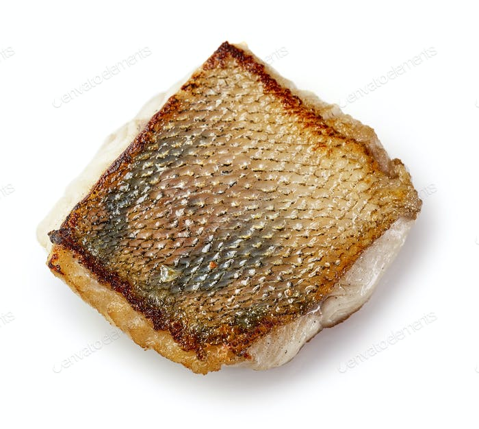 fried pike perch fillet