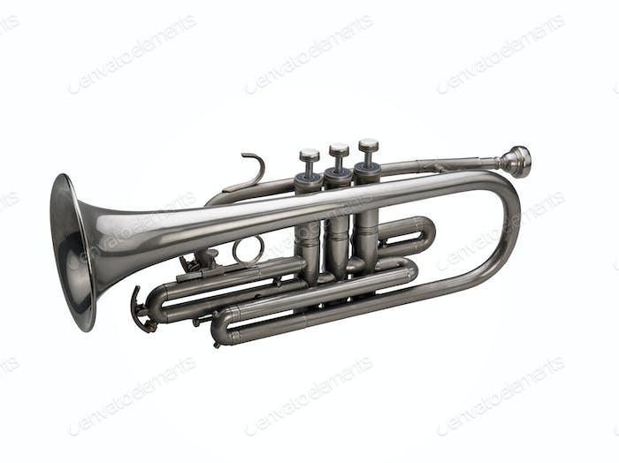 Silbertrompete isoliert auf weißem Hintergrund