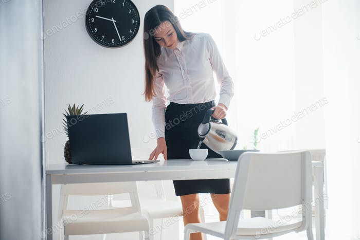 In the workplace. Young businesswoman with black hair in official clothes at her home