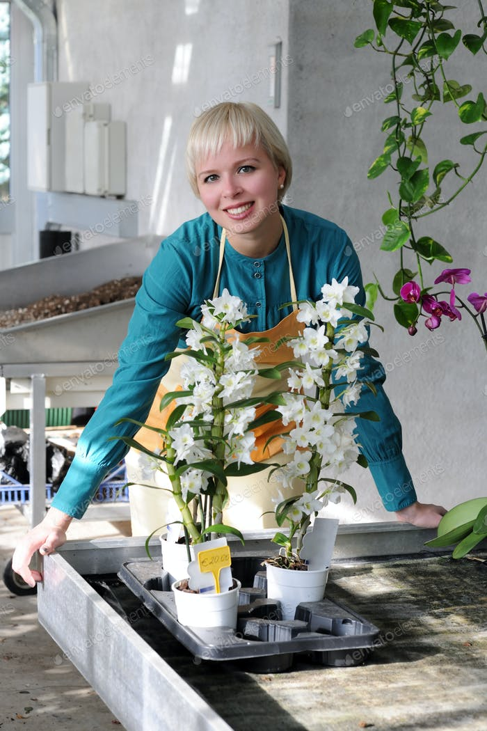 portrait of cheerful florist