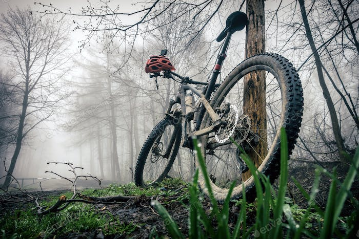 Mountain bike and helmet in autumn woods