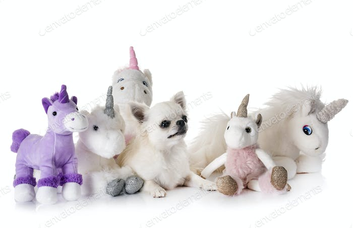 little dog and unicorn