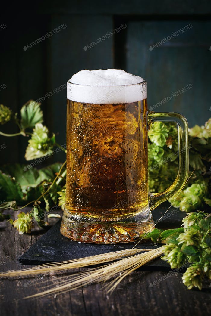 Mug of lager beer