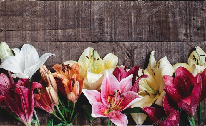 beautiful colorful lily flower on rustic wooden background