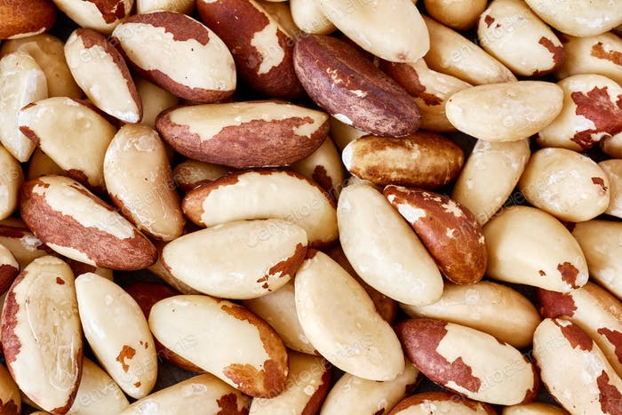 Close up picture of Brazil nuts.