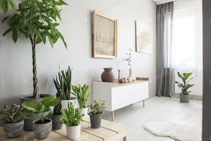 Plants next to white cupboard under burlap artwork in bright liv