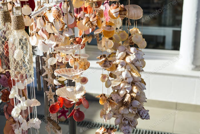 Big seashell collection in the street shop