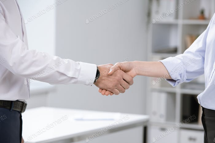 Business partners welcoming each other by handshake after signing new contract