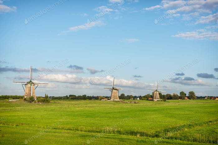 Three windmills in a spring landscape in Holland