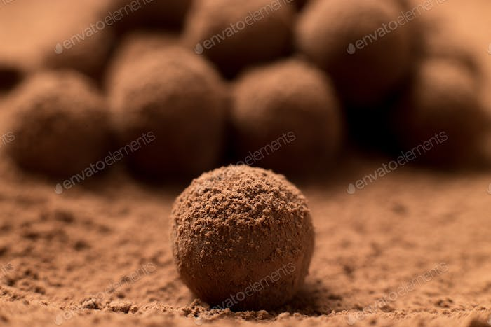 Appetizing black chocolate truffle