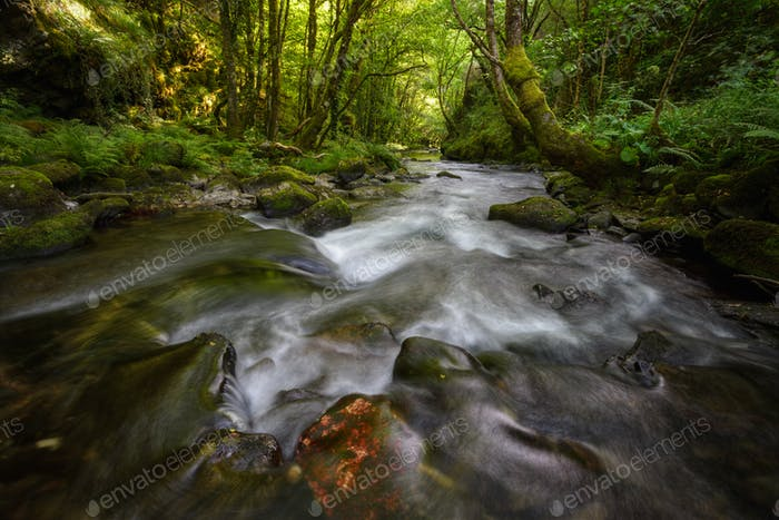 River of Calm Waters with Greenish Atmosphere