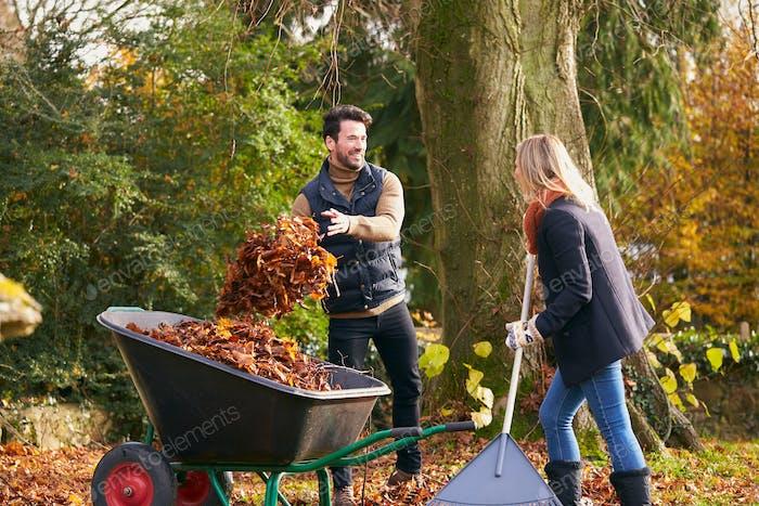 Couple Raking Autumn Leaves And Putting Into Wheelbarrow In Garden