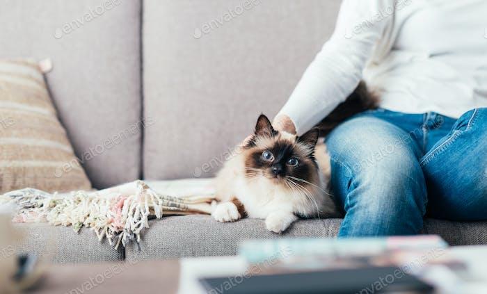 Frau kuscheln ihre Katze
