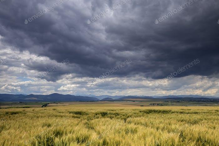 Landscape in Neamt - Romania