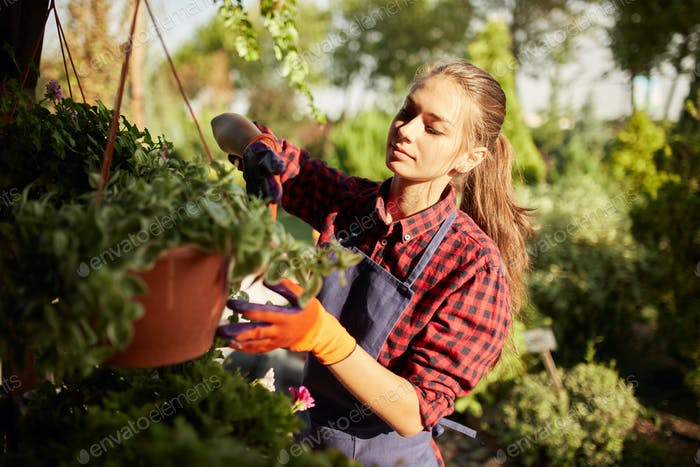 Nice girl gardener take care of the plants in the pot on the veranda in the wonderful garden on a
