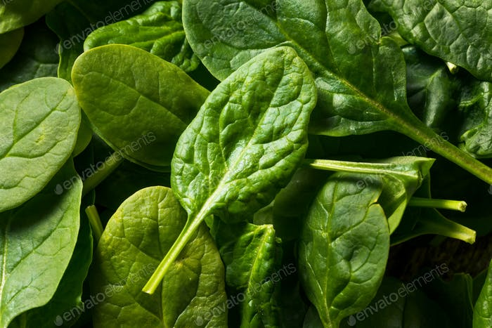 Raw Organic Fresh Baby Spinach