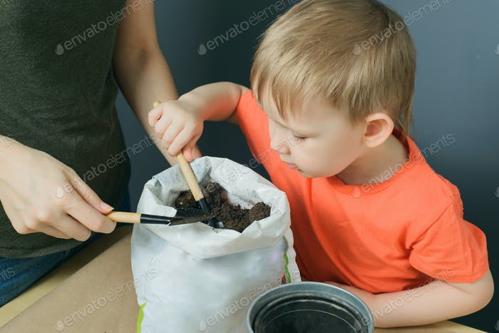 mother and little son take soil from bag to metal flower pot on table