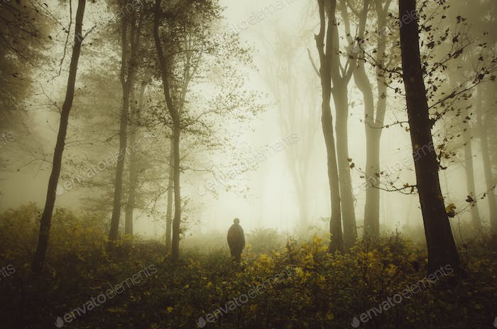 Man silhouette in mysterious autumn forest with fog
