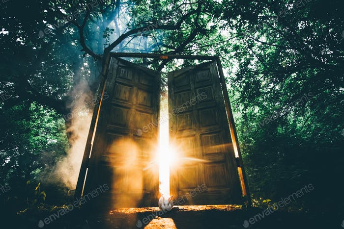 The fairytale door with back light in the mystic forest.