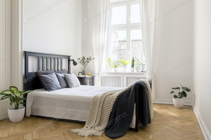Knit blanket on bed in minimal white bedroom interior with plant