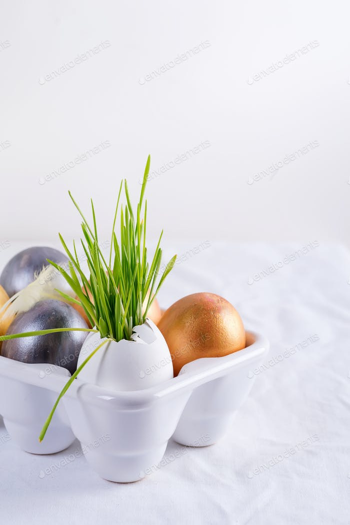 Easter grass growing in egg shell and easter eggs on a white table background. Eco concept