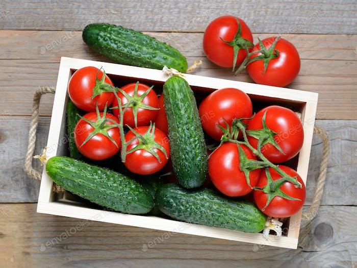 Gurken und Tomaten in Holzkiste Draufsicht