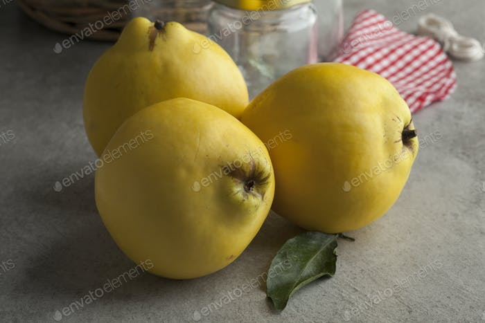 Fresh yellow quinces