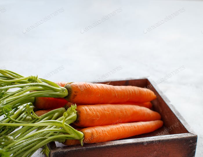 Fresh raw carrots with leaves
