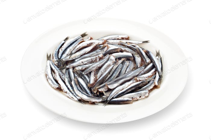 Fresh anchovies prepared seafood dishware shadow white background