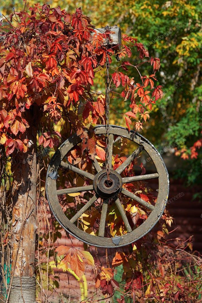 Herbstdekor mit Holzrad