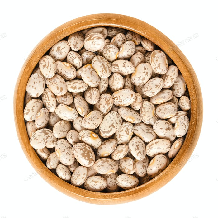 Pinto beans in wooden bowl over white