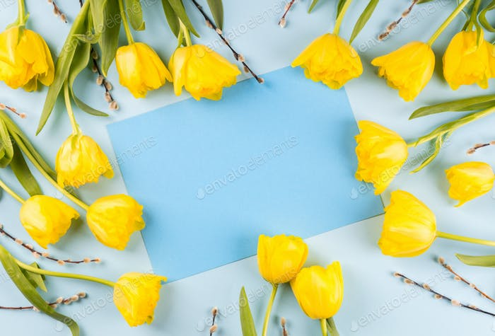 Easter composition yellow tulips and willow . Greeting card