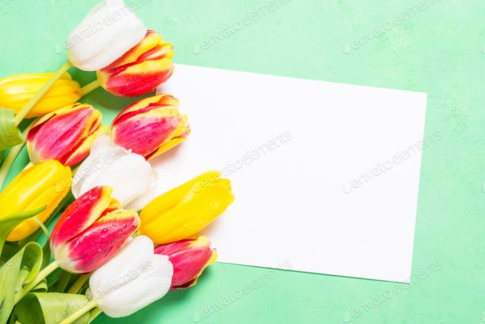 Flatlay flower background. Tulips and paper.