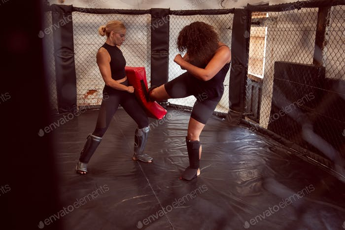 Two Female Mixed Martial Arts Fighters Kick Boxing Training In Gym
